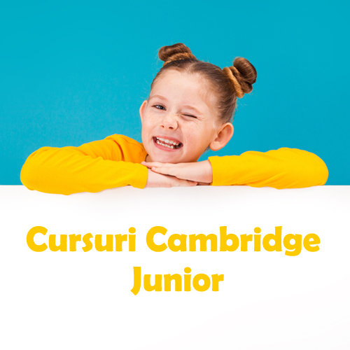 Cursuri Cambridge Junior